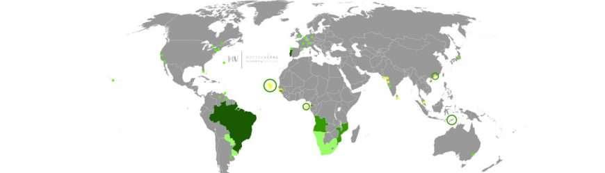 paesi-lingua-portoghese-1-1500×430-1