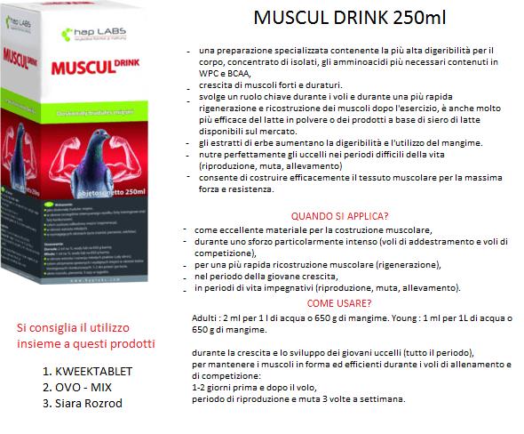 MUSCUL-COMPLETATO-1