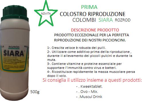 SIARA-COMPLETATO-1