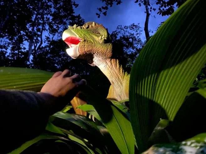 Dino-night-tour-3